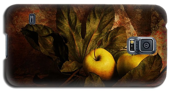 Comfy Apples Galaxy S5 Case