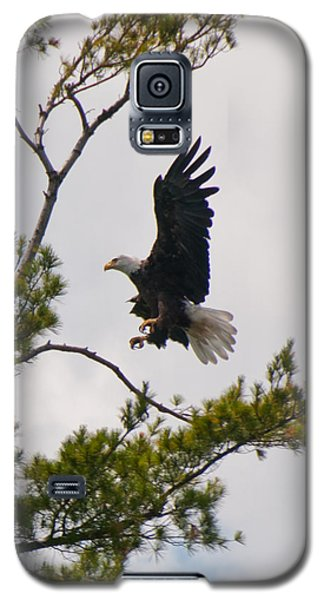 Galaxy S5 Case featuring the photograph Coming In For A Landing by Brenda Jacobs