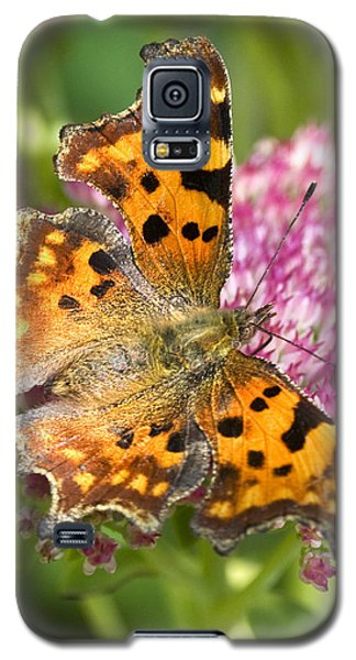 Comma Butterfly Galaxy S5 Case by Richard Thomas
