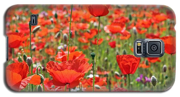 Commemorative Poppies Galaxy S5 Case