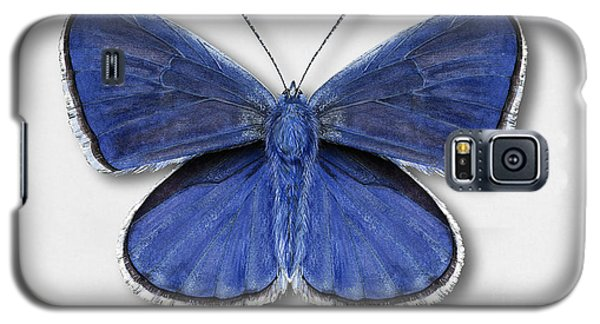 Common Blue Butterfly - Polyommatus Icarus Butterfly Naturalistic Painting - Nettersheim Eifel Galaxy S5 Case