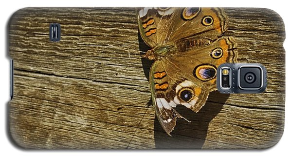 Galaxy S5 Case featuring the photograph Common Buckeye With Torn Wing by Lynn Palmer
