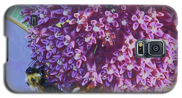 Galaxy S5 Case featuring the photograph Common Milkweed by Shirley Moravec
