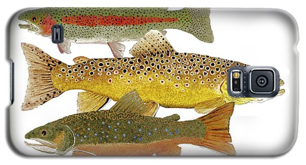 Galaxy S5 Case featuring the painting Common Trout  Rainbow Brown And Brook by Thom Glace