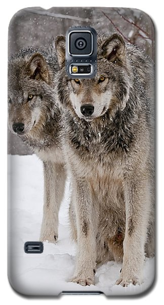 Companions Galaxy S5 Case by Wolves Only