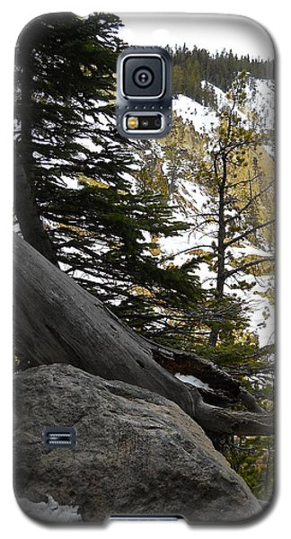 Composition At Lower Falls Galaxy S5 Case by Michele Myers