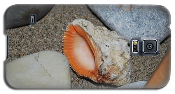 Galaxy S5 Case featuring the photograph Conch 1 by George Katechis