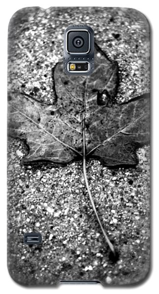 Concrete Leaf Galaxy S5 Case