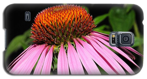 Cone Flower Galaxy S5 Case