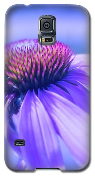 Cone Flower In Pastels  Galaxy S5 Case by Linda Bianic