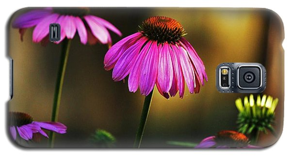 Cone Flower Shines... Galaxy S5 Case