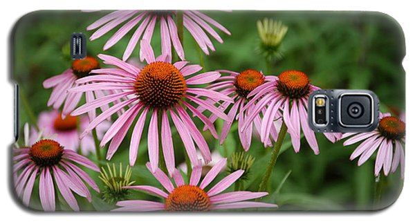 Galaxy S5 Case featuring the photograph Cone Flowers by Donald Williams