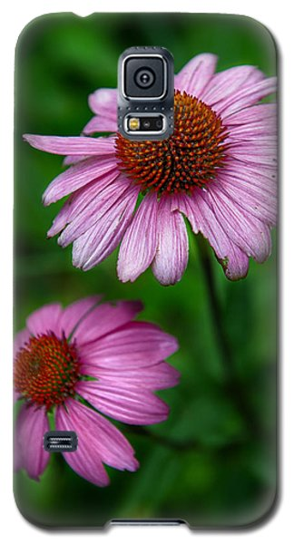 Cone Flowers Galaxy S5 Case