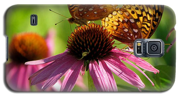 Coneflower Butterflies Galaxy S5 Case