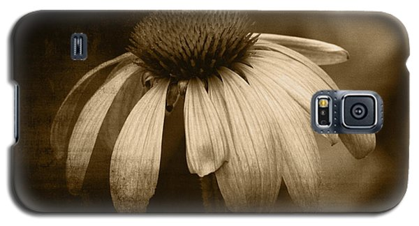 Galaxy S5 Case featuring the photograph Coneflower In Sepia by Marjorie Imbeau
