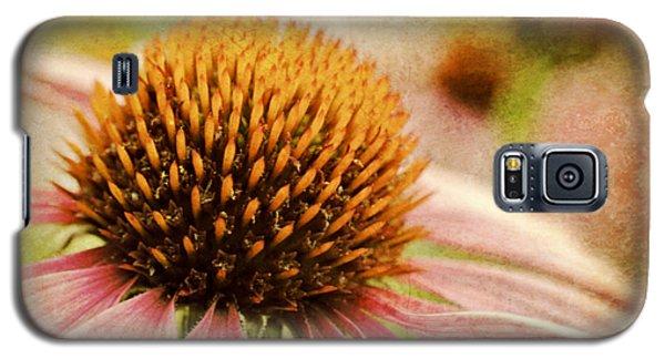 Coneflower Galaxy S5 Case by Kelly Nowak