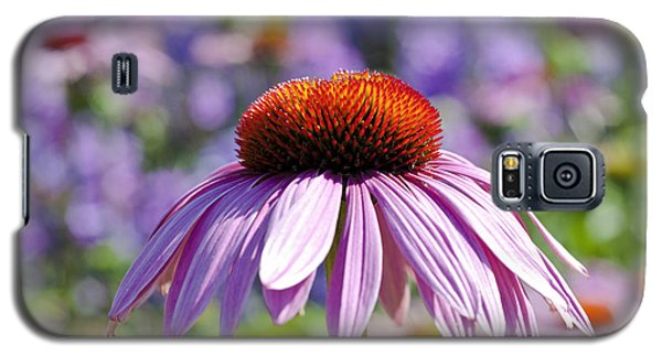 Galaxy S5 Case featuring the photograph Coneflower by Lana Enderle