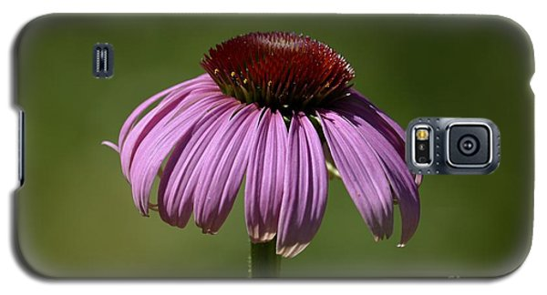 Galaxy S5 Case featuring the photograph Coneflower by Randy Bodkins