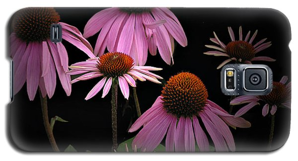 Coneflowers Galaxy S5 Case by Judy  Johnson