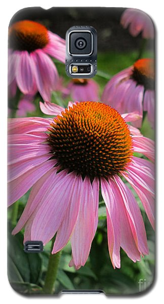 Conehead Daisy Galaxy S5 Case