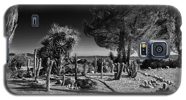 Galaxy S5 Case featuring the photograph Conejo Cactus by Ross Henton
