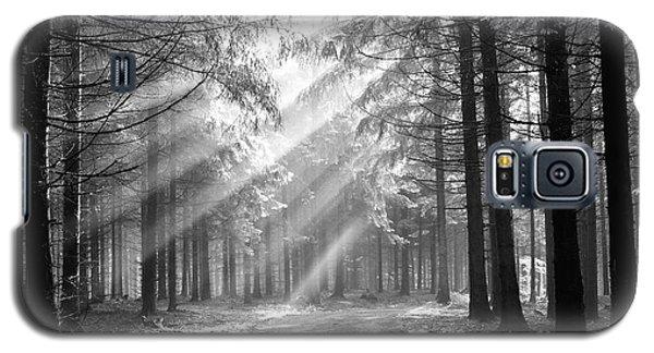 Coniferous Forest In Early Morning Galaxy S5 Case by Michal Boubin