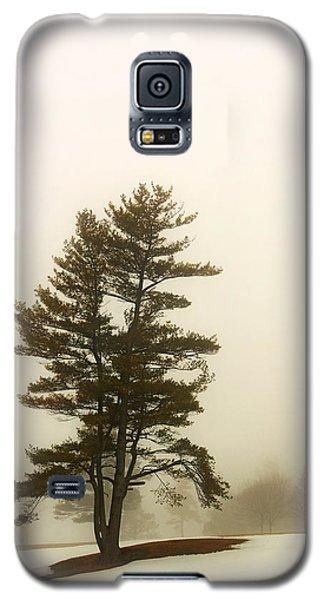 Coniferous Tree In Winter Galaxy S5 Case