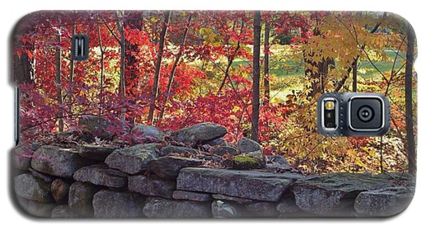 Connecticut Stone Walls Galaxy S5 Case