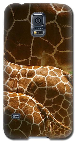 Connection Galaxy S5 Case by Randy Pollard