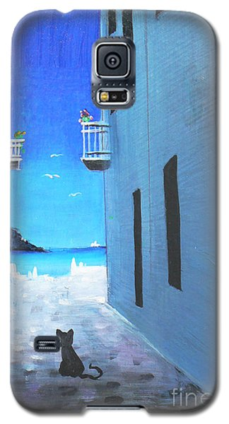 Contemplating Galaxy S5 Case