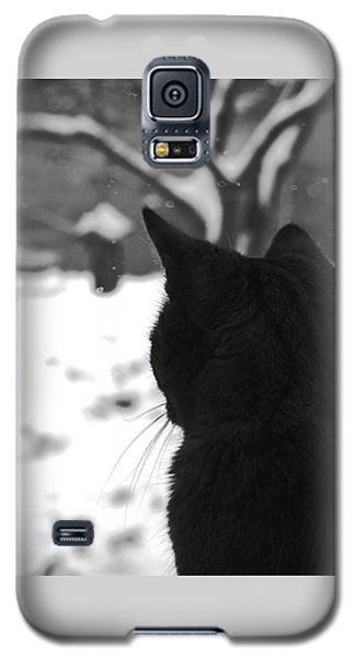 Contemplating Winter Galaxy S5 Case