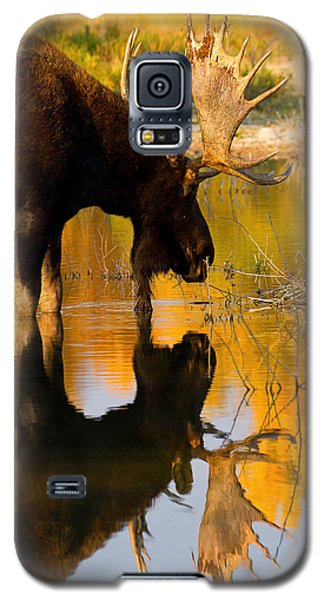 Galaxy S5 Case featuring the photograph Contemplative Moose by Aaron Whittemore
