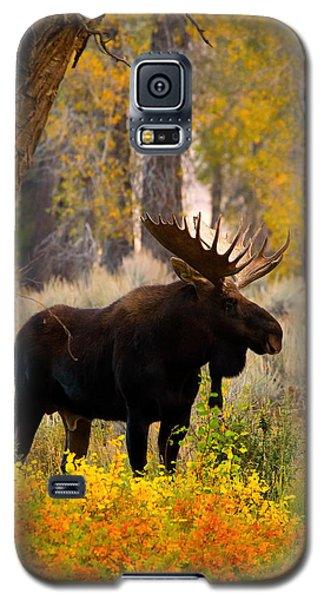 Contender Galaxy S5 Case by Aaron Whittemore