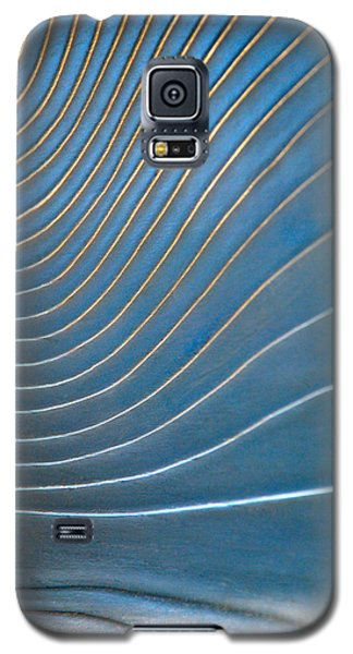 Galaxy S5 Case featuring the photograph Contours 1 by Wendy Wilton
