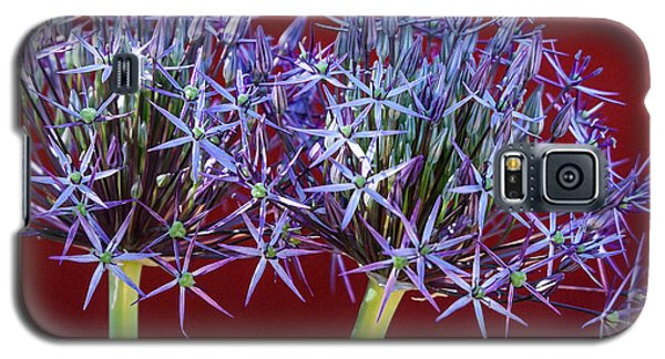 Galaxy S5 Case featuring the photograph Flowering Onions by Roselynne Broussard
