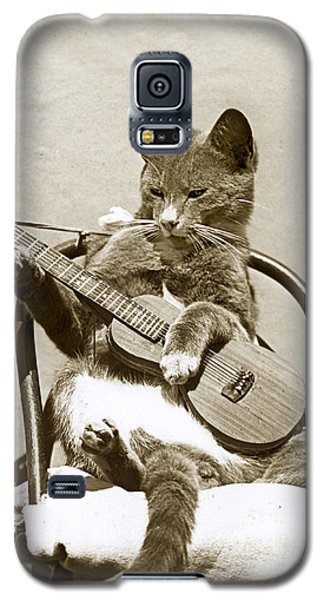 Galaxy S5 Case featuring the photograph Cool Cat Playing A Guitar Circa 1900 Historical Photo By Photo  Henry King Nourse by California Views Mr Pat Hathaway Archives