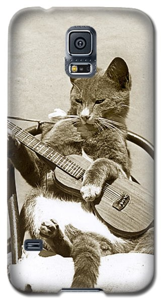 Cool Cat Playing A Guitar Circa 1900 Historical Photo By Photo  Henry King Nourse Galaxy S5 Case by California Views Mr Pat Hathaway Archives