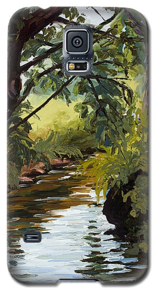 Cool Diversion Galaxy S5 Case