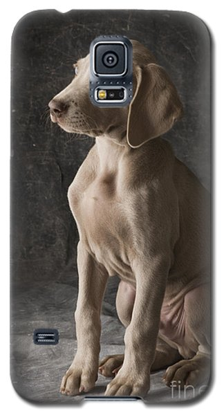 Cooper Galaxy S5 Case