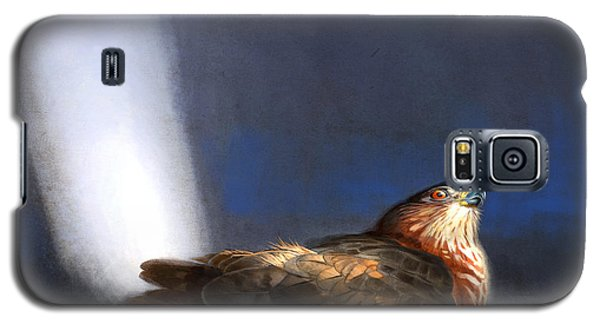Galaxy S5 Case featuring the digital art Coopers Hawk by Aaron Blaise