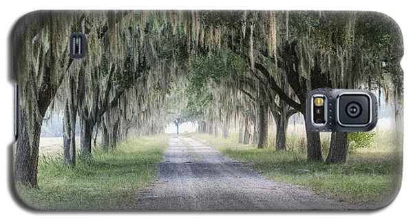 Coosaw Fog Avenue Of Oaks Galaxy S5 Case