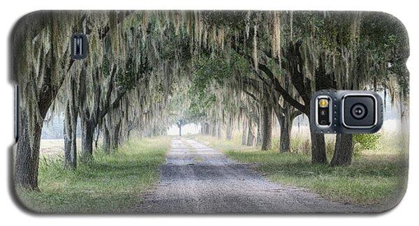 Coosaw Fog Avenue Of Oaks Galaxy S5 Case by Scott Hansen