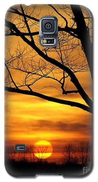 Copper Tones Ll Galaxy S5 Case