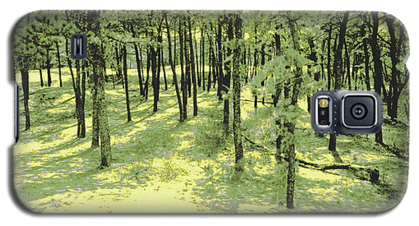 Galaxy S5 Case featuring the photograph Copse Of Trees Sunlight by Tom Wurl