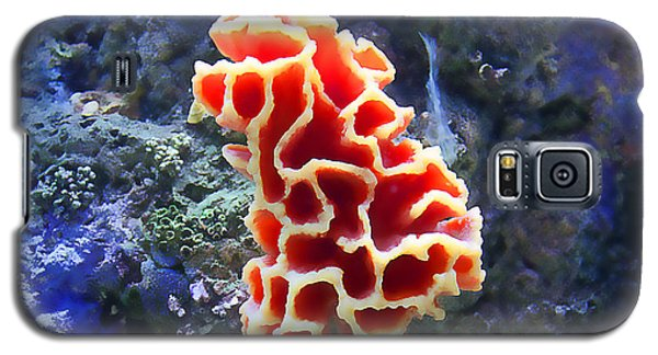 Coral Artistry Galaxy S5 Case