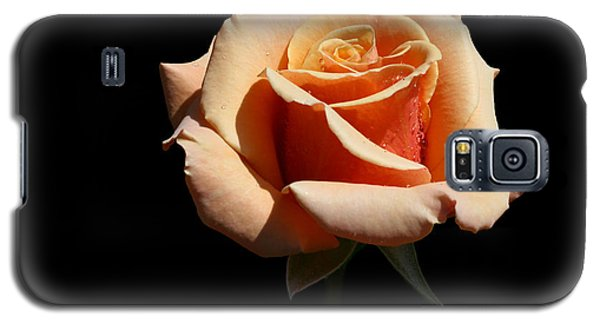 Galaxy S5 Case featuring the photograph Coral Cup by Doug Norkum