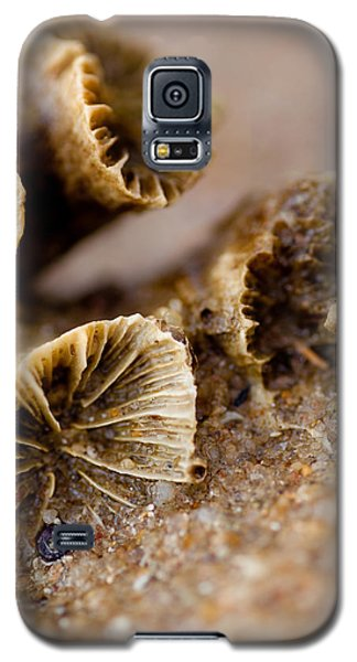 Galaxy S5 Case featuring the photograph Coral In The Sand by Carole Hinding