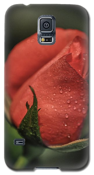 Galaxy S5 Case featuring the photograph Coral Rosebud by Debbie Karnes