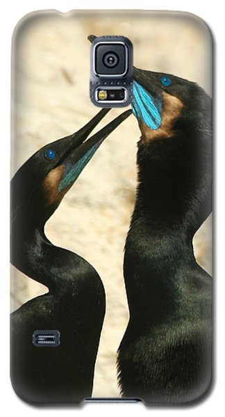 Galaxy S5 Case featuring the photograph Cormorant Love by Bob and Jan Shriner