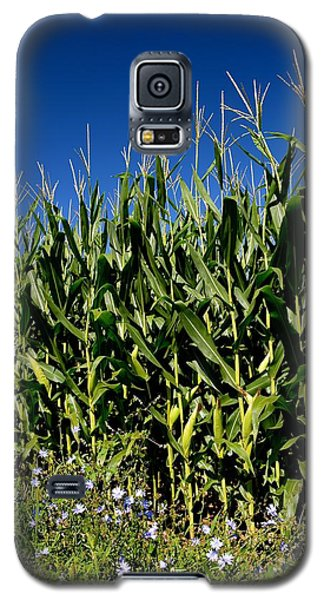 Corn And Wildflowers Galaxy S5 Case